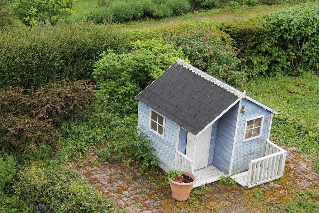 Как оформить дачный участок в собственность?
